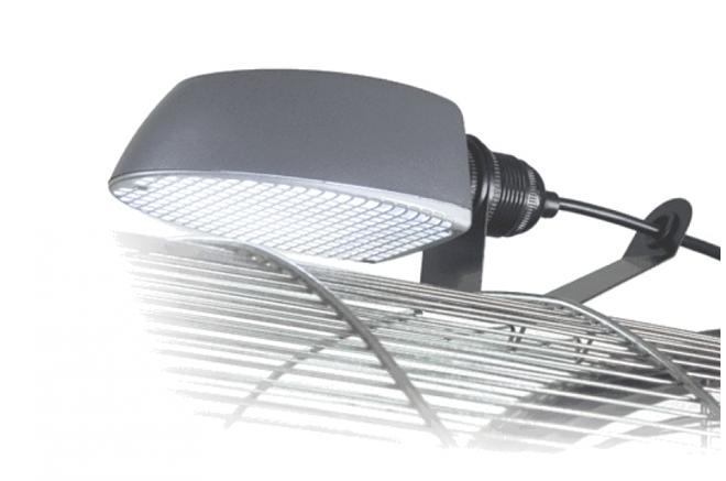 Лампа для попугаев Жако