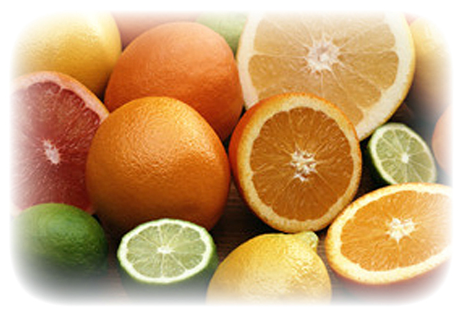 Можно ли волнистым попугаям мандарины