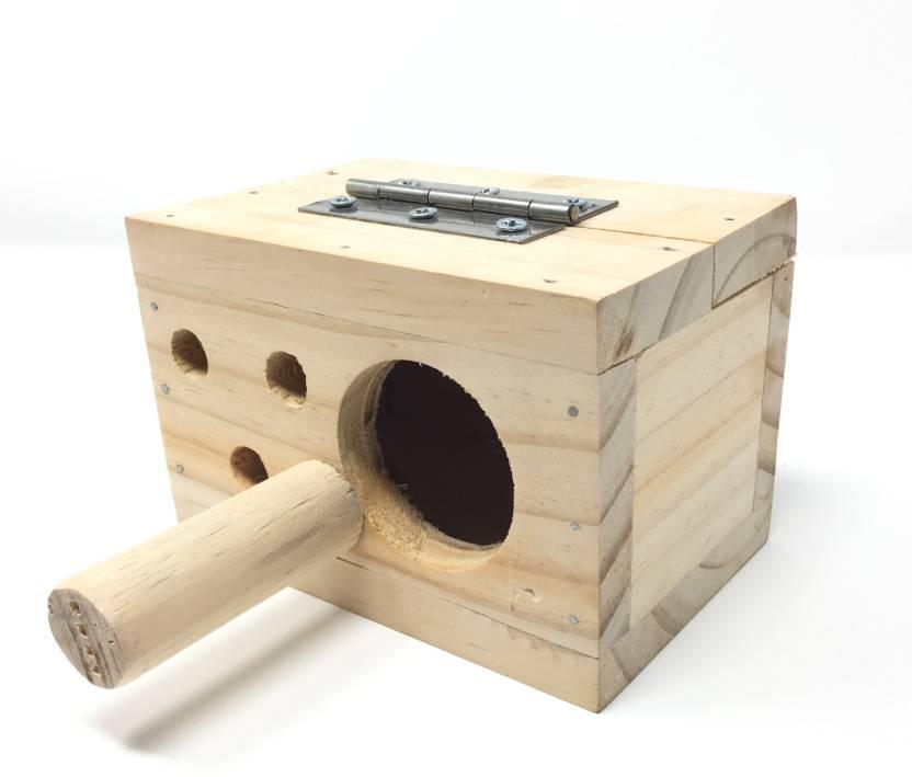 Неразлучники попугаи размножение в домашних условиях